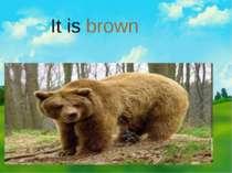 It is brown