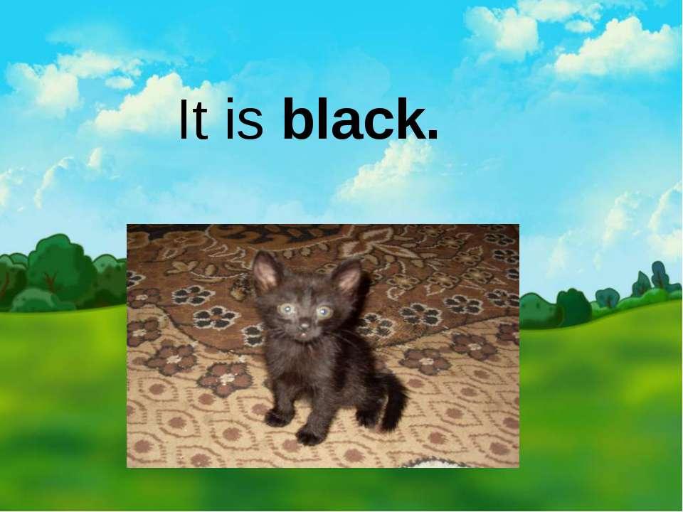 It is black.
