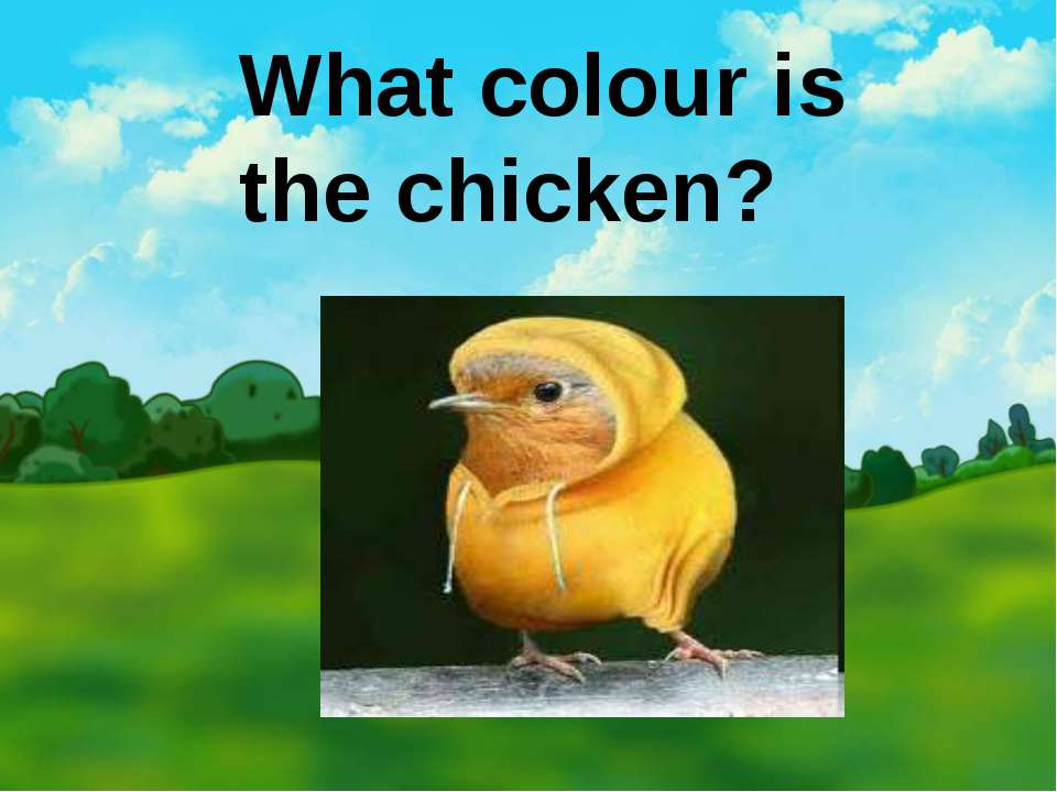 What colour is the chicken?