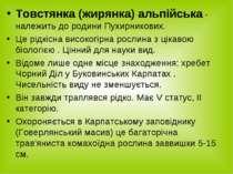 Товстянка (жирянка) альпійська - належить до родини Пухирникових. Це рідкісна...