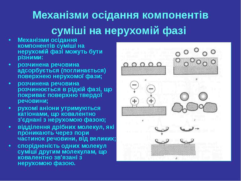 Механізми осідання компонентів суміші на нерухомій фазі Механізми осідання ко...
