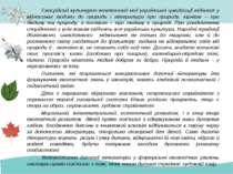 Своєрідний культурно-генетичний код української цивілізації відбився у віднос...