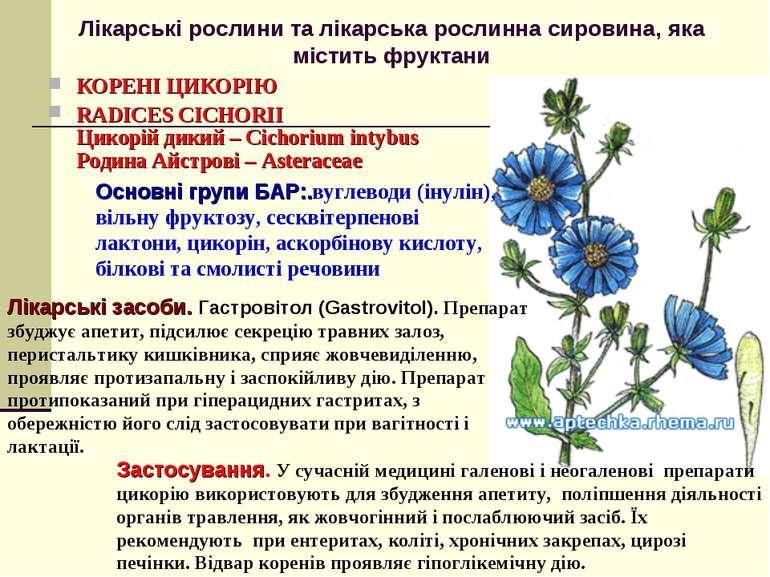 Лікарські рослини та лікарська рослинна сировина, яка містить фруктани КОРЕНІ...