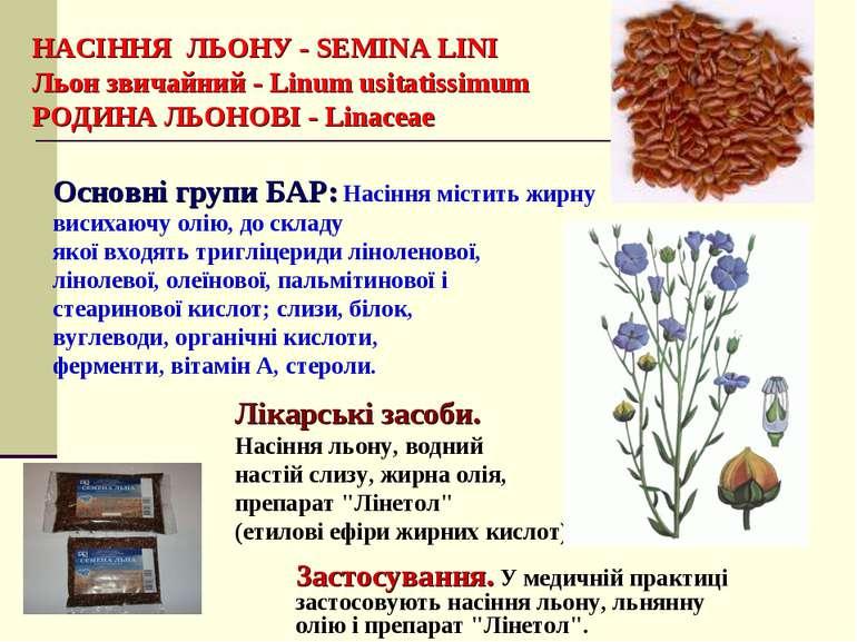 НАСІННЯ ЛЬОНУ - SEMINA LINI Льон звичайний - Linum usitatissimum РОДИНА ЛЬОНО...