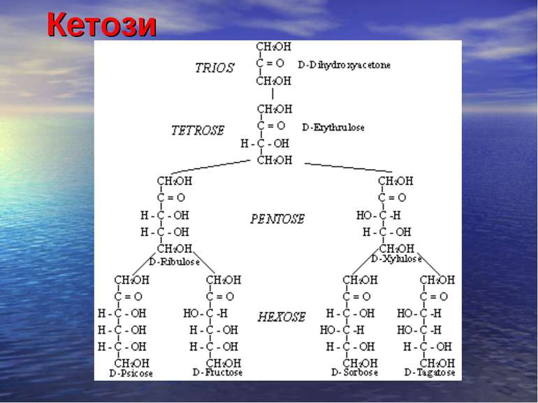 Кетози