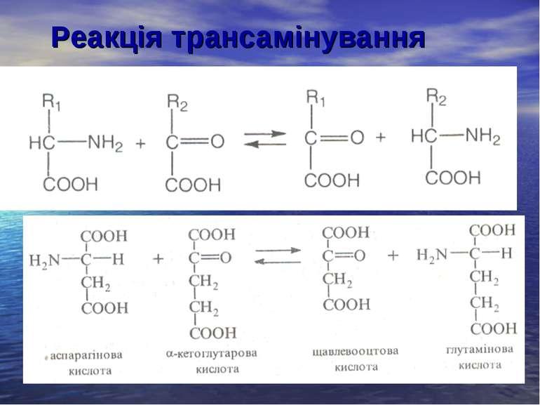 Реакція трансамінування