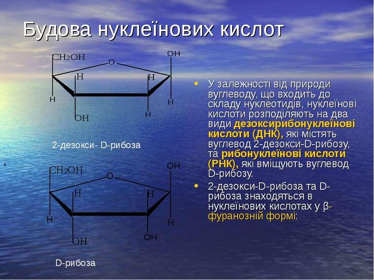 Будова нуклеїнових кислот У залежності від природи вуглеводу, що входить до с...