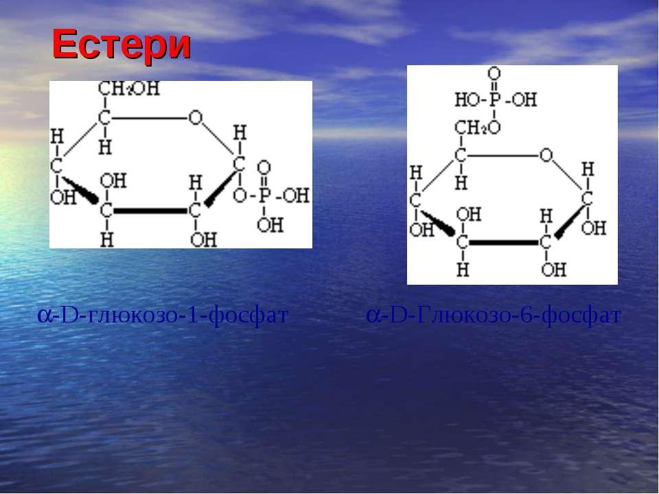 Естери  -D-глюкозо-1-фосфат -D-Глюкозо-6-фосфат