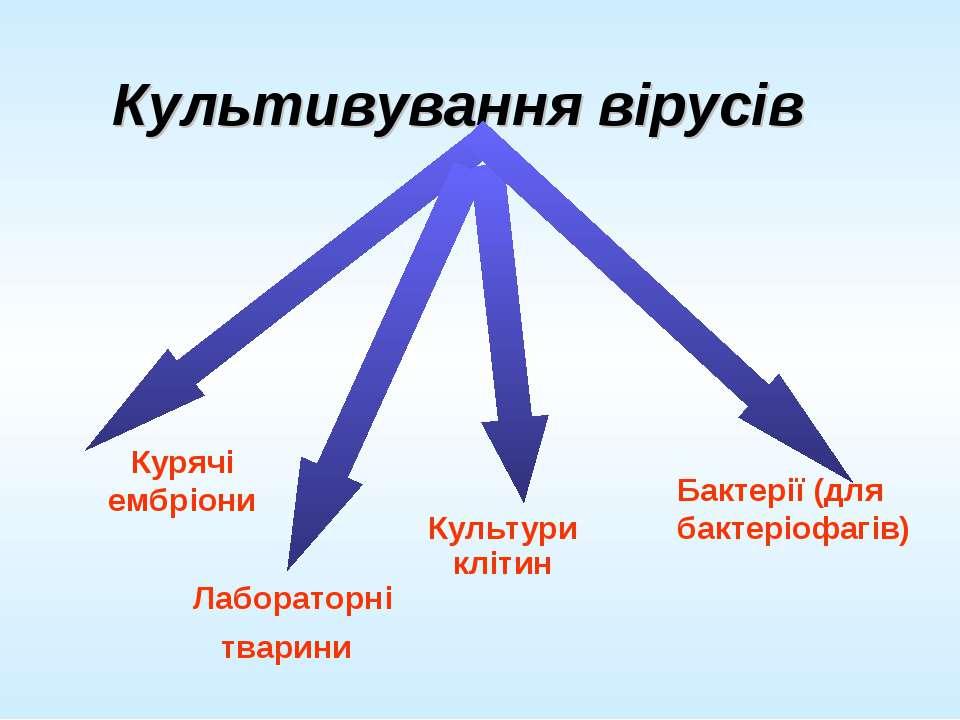 Культивування вірусів Культури клітин Лабораторні тварини Курячі ембріони Бак...
