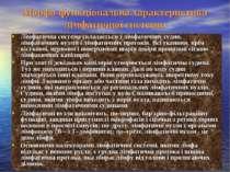Морфо-функціональна характеристика лімфатичної системи. Лімфатична система ск...