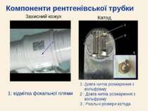 Компоненти рентгенівської трубки 1: Довга нитка розжарення з вольфраму 2 : До...