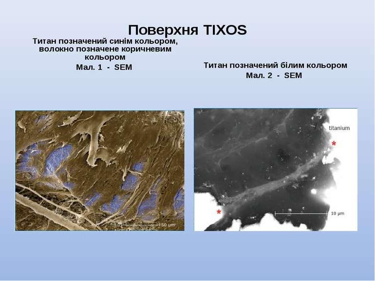 Поверхня TIXOS Титан позначений синім кольором, волокно позначене коричневим ...