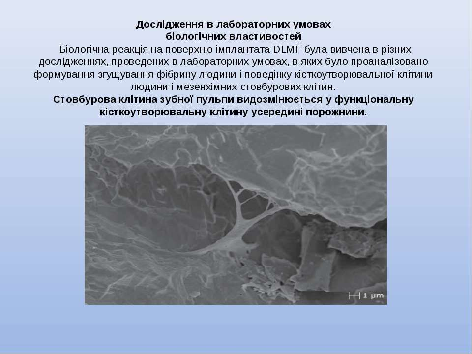 Дослідження в лабораторних умовах біологічних властивостей Біологічна реакці...