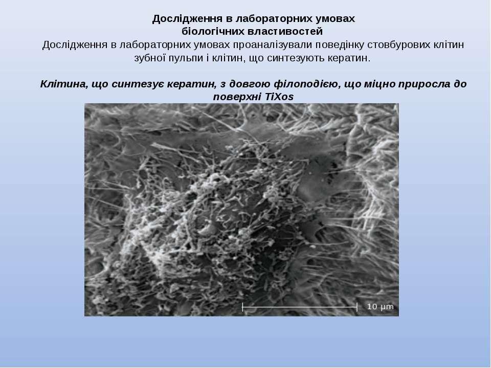 Дослідження в лабораторних умовах біологічних властивостей Дослідження в лаб...