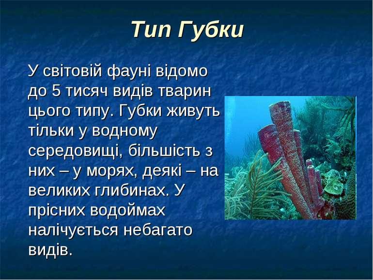 Тип Губки У світовій фауні відомо до 5 тисяч видів тварин цього типу. Губки ж...