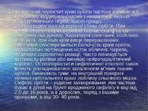 Сифілітичний періостит краю орбіти частіше виникає в її верхньому відділі, од...