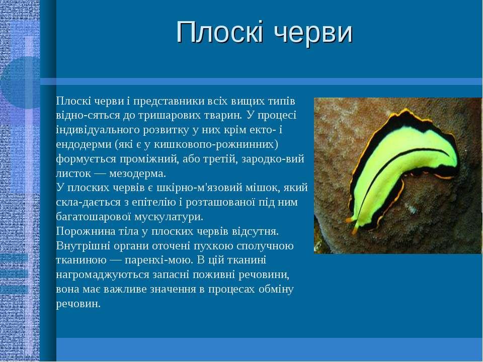 Плоскі черви Плоскі черви і представники всіх вищих типів відно сяться до три...
