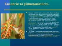 Екологія та різноманітність Комахи освоїли земну поверхню, ґрунт, повітря. Де...