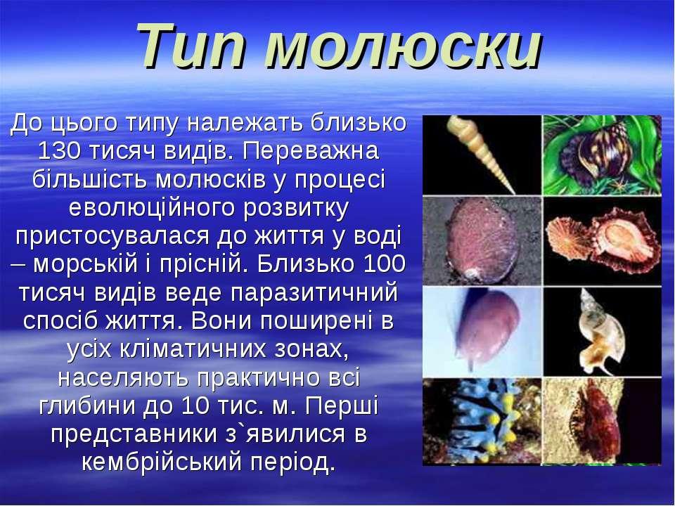 Тип молюски До цього типу належать близько 130 тисяч видів. Переважна більшіс...