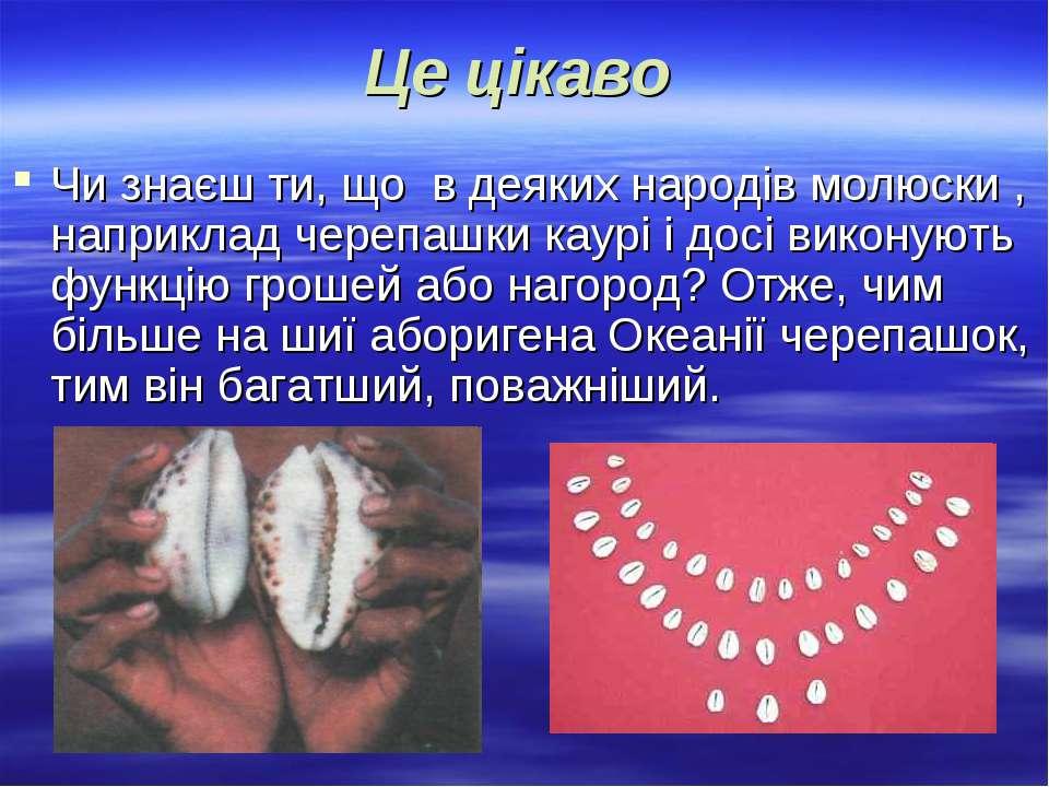 Це цікаво Чи знаєш ти, що в деяких народів молюски , наприклад черепашки каур...
