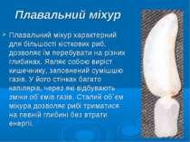 Плавальний міхур Плавальний міхур характерний для більшості кісткових риб, до...