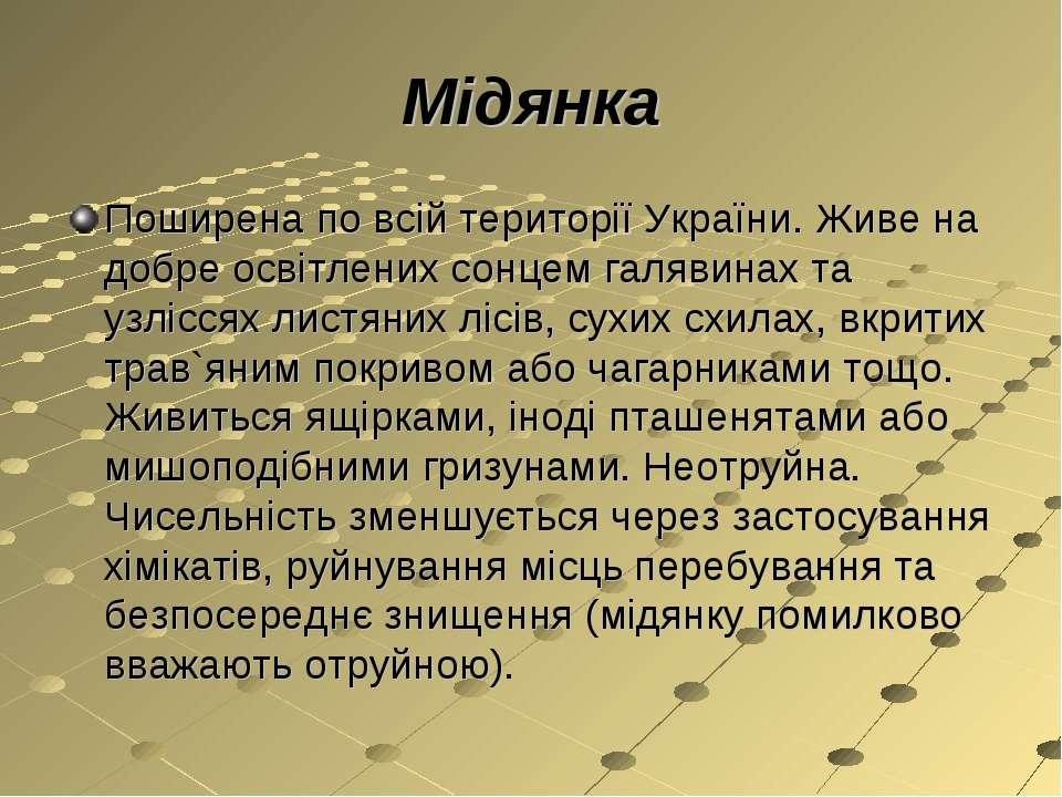 Мідянка Поширена по всій території України. Живе на добре освітлених сонцем г...
