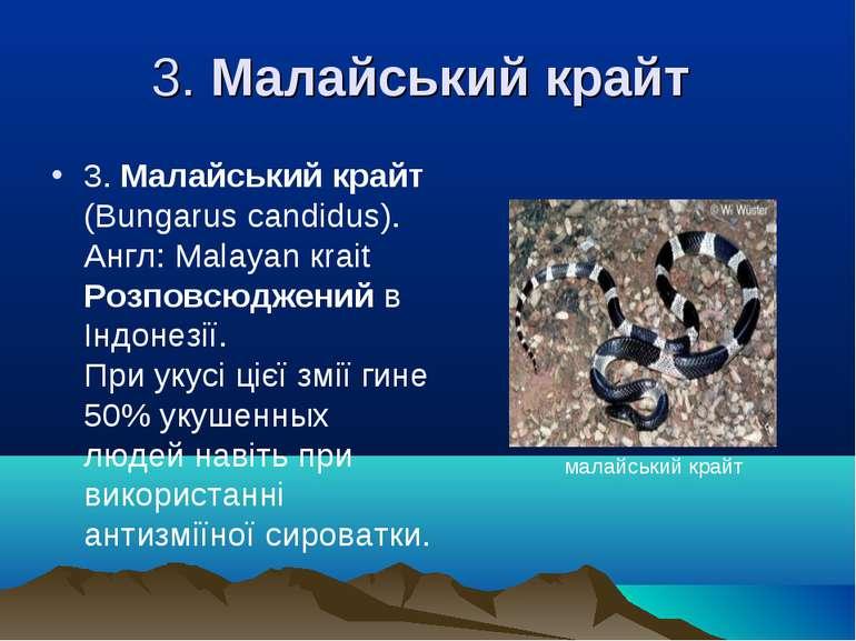 3. Малайський крайт 3. Малайський крайт (Bungarus candіdus). Англ: Malayan кr...