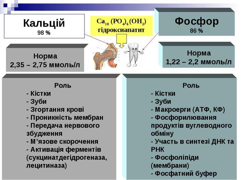Кальцій 98 % Фосфор 86 % Норма 2,35 – 2,75 ммоль/л Норма 1,22 – 2,2 ммоль/л Р...