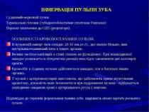 ІННЕРВАЦІЯ ПУЛЬПИ ЗУБА Судинний-нервовий пучок Термінальні гілочки (субодонто...