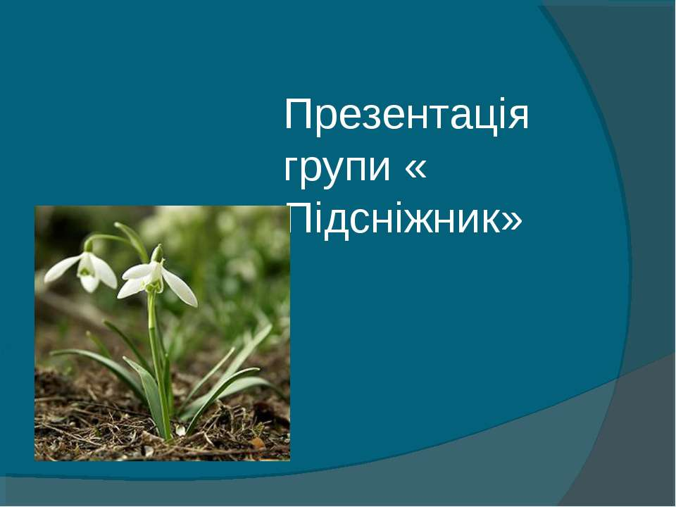 Презентація групи « Підсніжник»
