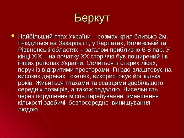 Беркут Найбільший птах України – розмах крил близько 2м. Гніздиться на Закарп...