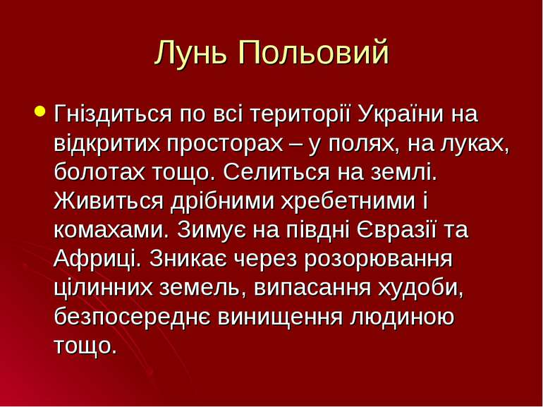 Лунь Польовий Гніздиться по всі території України на відкритих просторах – у ...