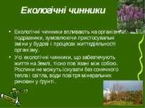 Екологічні чинники Екологічні чинники впливають на організми подразники, зумо...