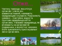 Отже… Частину природи, яка оточує організм і з якою він взаємопов`язаний, наз...