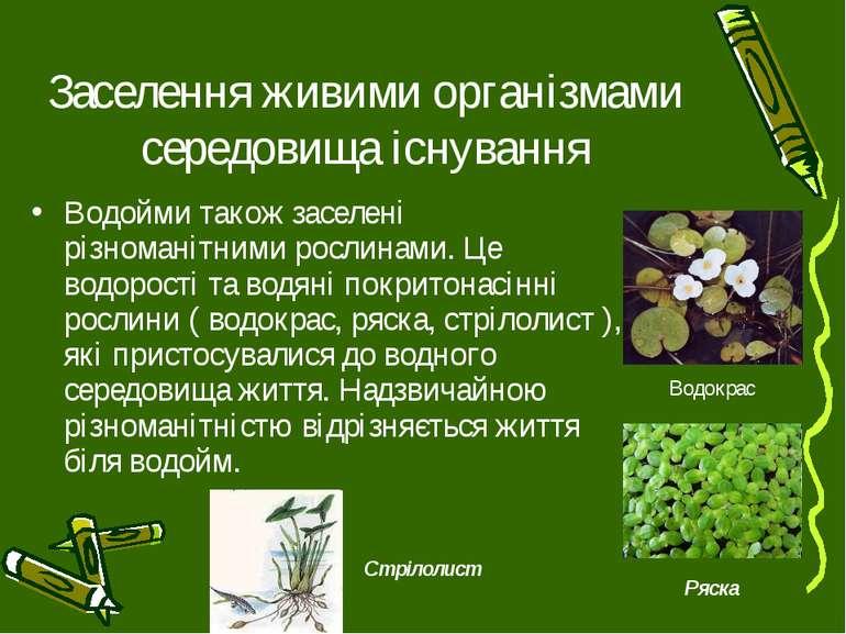 Заселення живими організмами середовища існування Водойми також заселені різн...