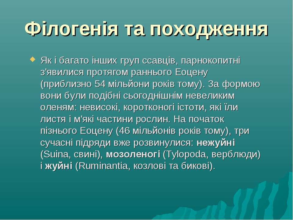Філогенія та походження Як і багато інших груп ссавців, парнокопитні з'явилис...