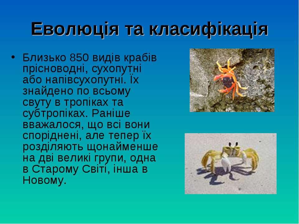 Еволюція та класифікація Близько 850 видів крабів прісноводні, сухопутні або ...