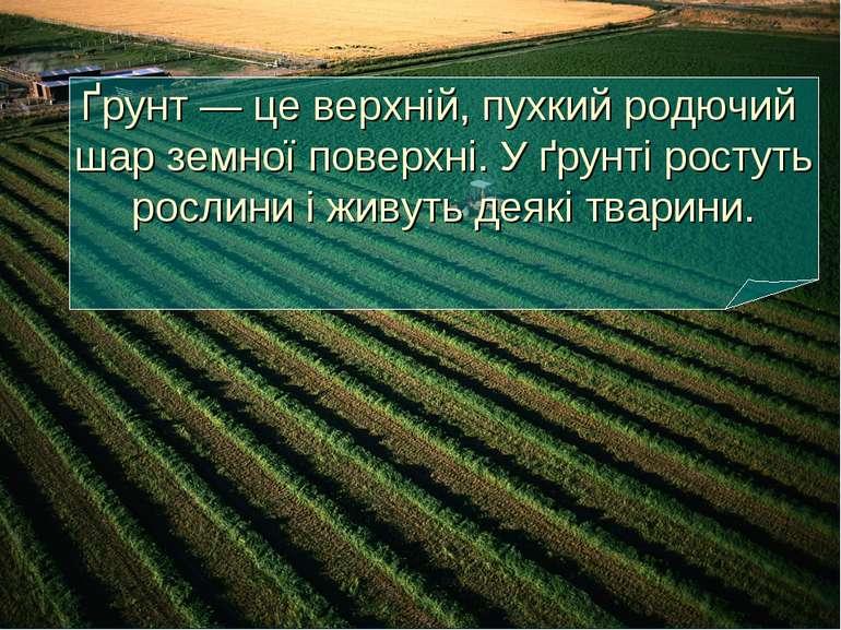 Ґрунт — це верхній, пухкий родючий шар земної поверхні. У ґрунті ростуть росл...