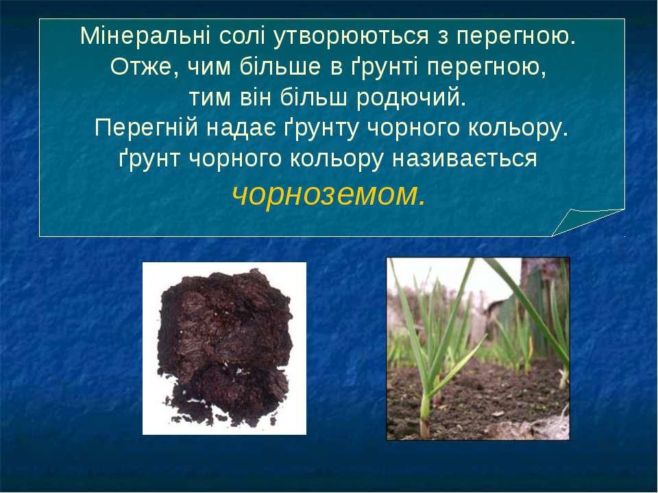 Мінеральні солі утворюються з перегною. Отже, чим більше в ґрунті перегною, т...