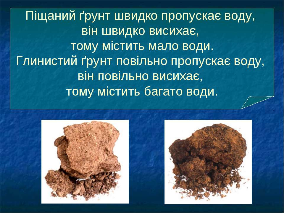 Піщаний ґрунт швидко пропускає воду, він швидко висихає, тому містить мало во...