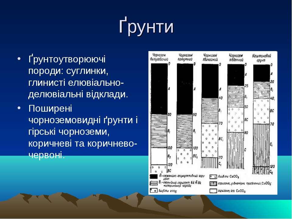 Ґрунти Ґрунтоутворюючі породи: суглинки, глинисті елювіально-делювіальні відк...