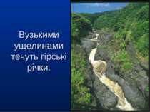Вузькими ущелинами течуть гірські річки.