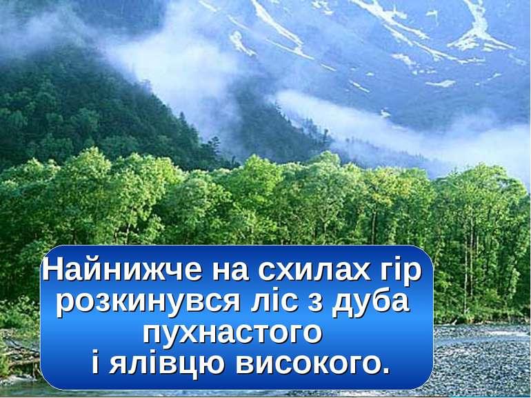 Найнижче на схилах гір розкинувся ліс з дуба пухнастого і ялівцю високого.