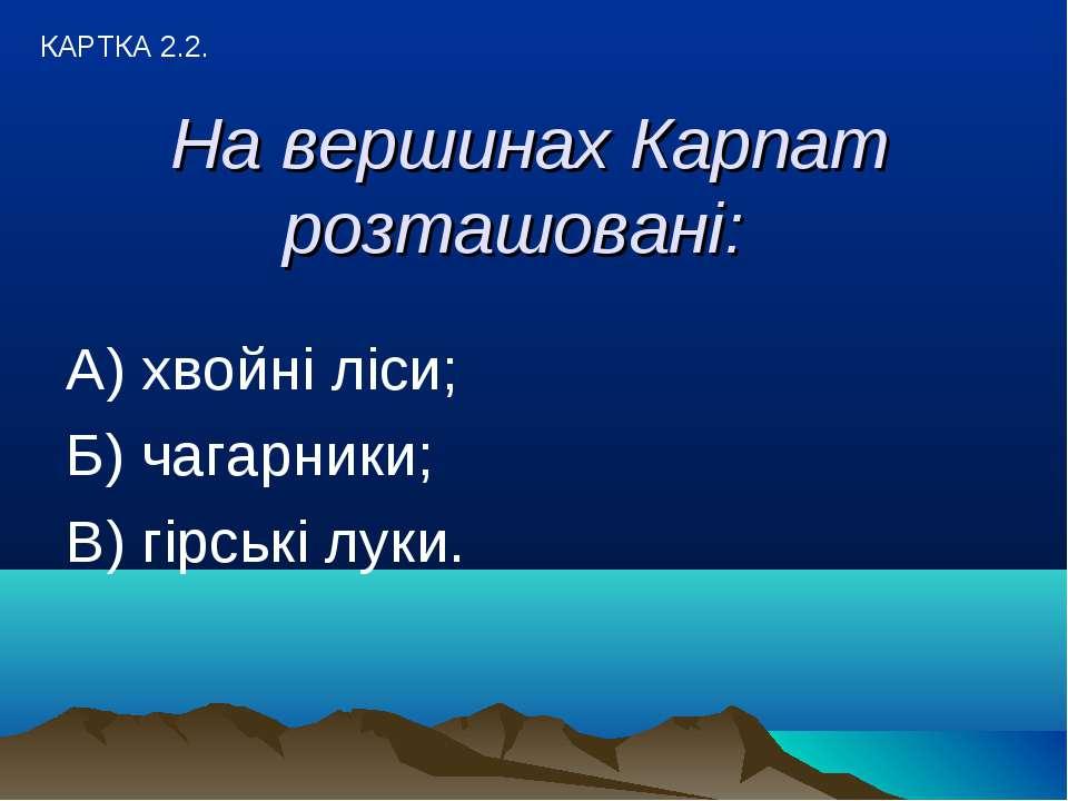 На вершинах Карпат розташовані: А) хвойні ліси; Б) чагарники; В) гірські луки...