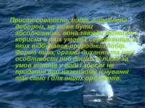 Пристосованість видів, вироблена добором, не може бути абсолютною, вона завжд...