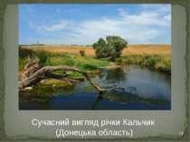 * Сучасний вигляд річки Кальчик (Донецька область)