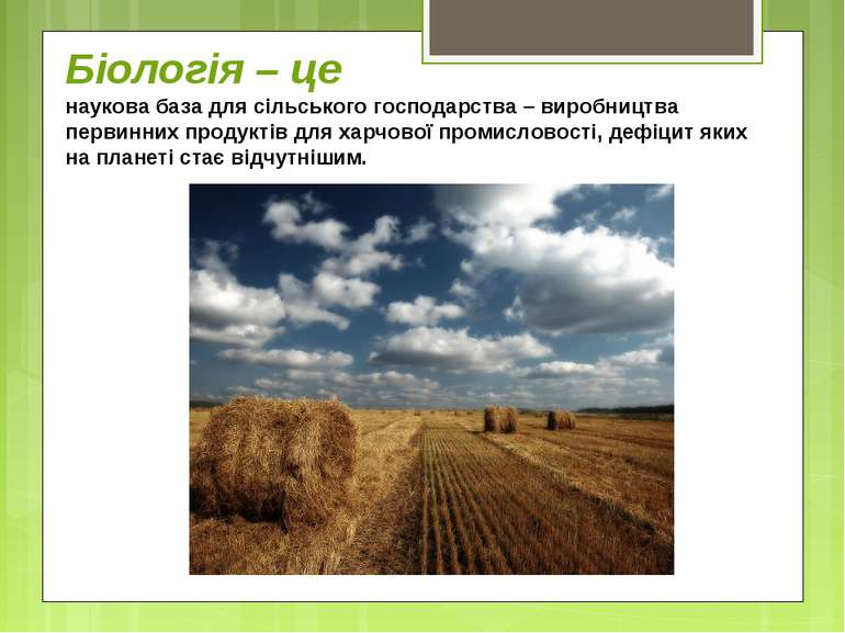 Біологія – це наукова база для сільського господарства – виробництва первинни...