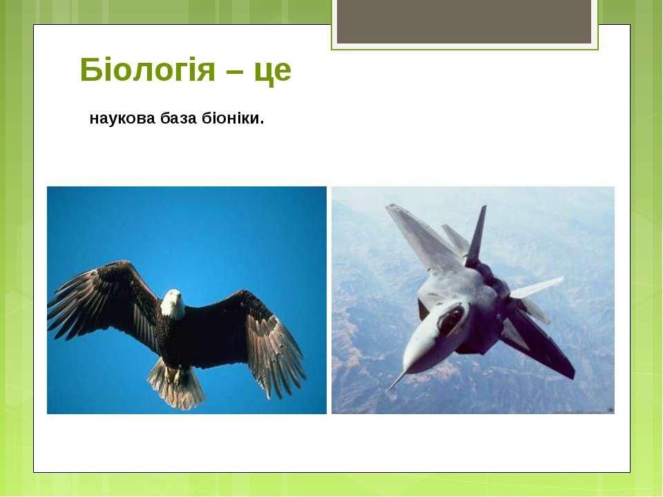 Біологія – це наукова база біоніки.