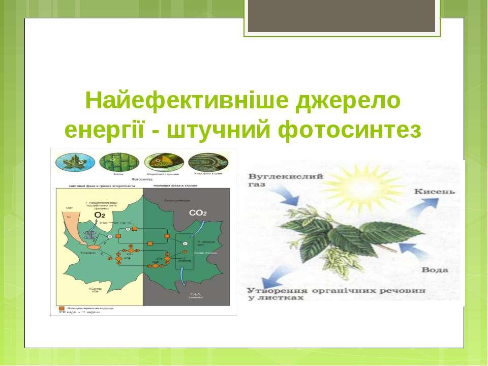 Найефективніше джерело енергії - штучний фотосинтез