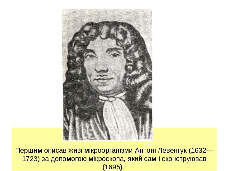 Першим описав живі мікроорганізми Антоні Левенгук (1632—1723) за допомогою мі...